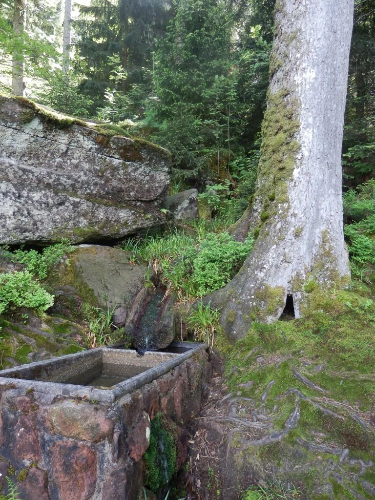 Rock Water, l'eau de roche
